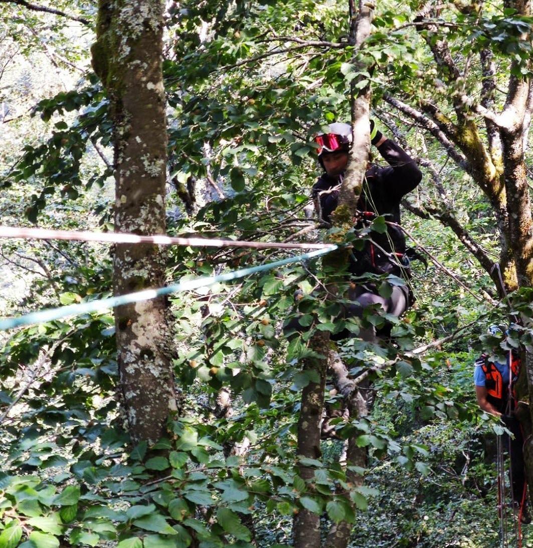 Ballon-d'Alsace – Un parapentiste finit dans un arbre à 30 mètres du sol