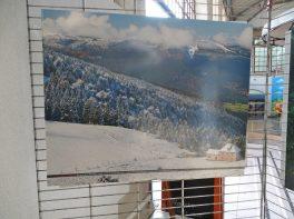 Expo 'Nature sur toute la ligne'09