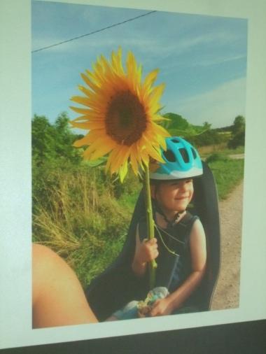La photo du second prix Regardez, je suis le Roi Soleil.